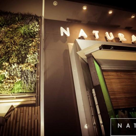 Interior Natural